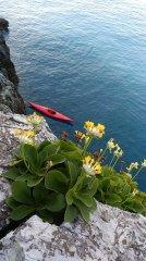 kayak_26.jpg